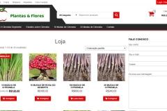 plantas-e-flores-loja-virtual